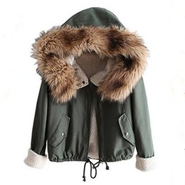 Vintage Raccoon Fur Coats Online | Vintage Raccoon Fur Coats for Sale