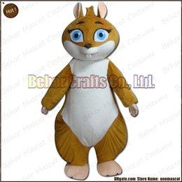 Wholesale Écureuil mascotte costume Livraison gratuite bonhomme de bonhomme de bonne qualité Écureuil adulte de bande dessinée de mascotte de fille acceptent l ordre d OEM