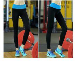 Leggings Tall Women Online   Women S Leggings Tall for Sale