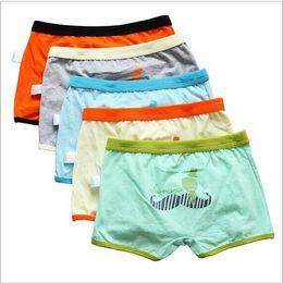 14 Boys Underwear Online | 14 Boys Underwear for Sale