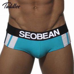 Wholesale Mens Sexy Underwear Briefs Cotton Men Brief Underwear Gay Penis Pouch WJ Brand Low Waist Sports Underpants Low Waist