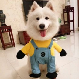 2016 Hot Sale modelling of Minions micky Dog Costume Novelty Funny Halloween  Party Pet Dog Clothes role play Large Dog Clothing