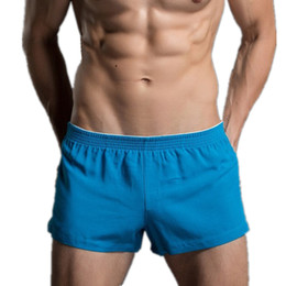 Wholesale Sexy Mens Underwear Boxer Shorts Brand See Through Men Boxers Low Waist Male Trunks Mesh Sheer Men Boxer Shorts Gay Penis Pouch