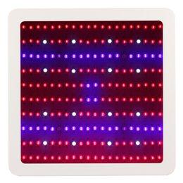 El espectro lleno 1000w 1200W 1600W 2000W LED crece el doble de la luz llevó la lámpara de la planta Invernadero de interior que crece el jardín que florece las luces hidropónicas