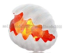 Sea Shell Himalayan Lámpara Natural de Sal de Cristal con Bombilla y Control de Dimmer Aire Purificadora de Sal de Terapia Lámpara de Mesa Ionizador y Purificadores de Aire