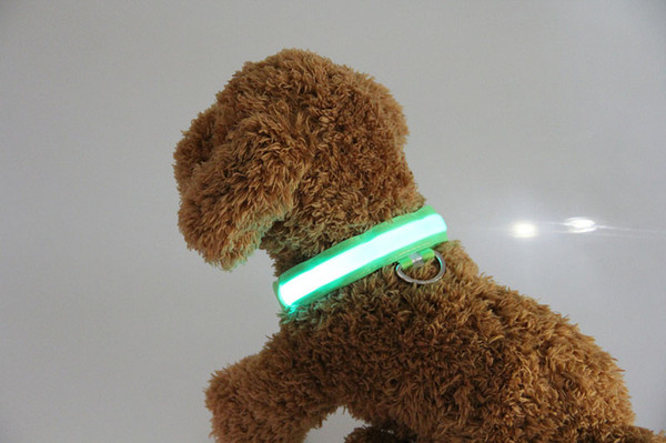 Led dog collar pet led dog necklace collar u b rechargeable in 6 color 4 ize for night afety