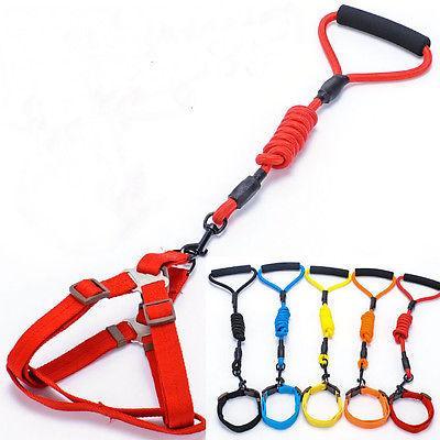Pet dog adjustable nylon rope traning leash slip lead strao traction collar nylon harness lead leash traction rope фото