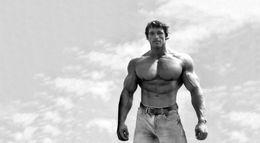 Wholesale Arnold Schwarzenegger Actor Fabric Poster