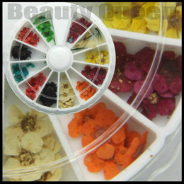 18 Pcs Lot 12 Style Dried Dry Flower 3D Nail Art Decoration UV Acrylic Design + Wheel + Free Shiping