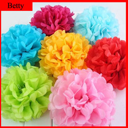 Wholesale-Free Shipping 10inch (25cm) 20pcs lot Tissue Paper Pom Poms Flower Ball Wedding Decoration Paper Ball