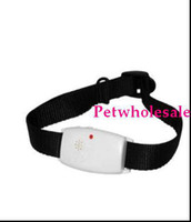 Wholesale pet s pest repeller Ultrasonic DOG Pest Repeller Pet Pest Control ultrasonic pest repeller pet produ