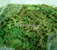 baskets bulk - g BULK Bag of Dried Artificial Reindeer Moss for Flowers Hanging Baskets Lining