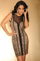 beauty accents - Beauty online New Sexy Brown Leopard Print Black Mesh Accent Luxe Dress LC2664