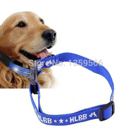 Wholesale S L Month Effective Anti Fleas amp Ticks amp Mosquitoes Collar Elimination Nylon Neck Strap for Dogs Pets Puppies IH0ja