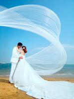 wedding dresses 2011 - The bride wedding dress train veil ultra long meters single tier elegant long design veil