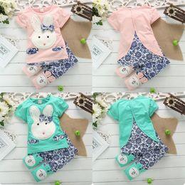 Wholesale PC Suit Baby Kids Girls Lovely Rabbit Y Pink Green Porcelain Top Pants Set Clothes