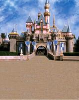 Wholesale feet feet background Majestic castle banner photography backdropsvinyl photography backdrop LK