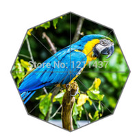 animal umbrella stands - New Arrive Three Fold Rain Sun Umbrella Animal Parrots Standing On The Branch UV Protection Umbrellas For Travel