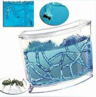 bear workshop - Ant workshop space base ant farm ecological toys big size version children educational item