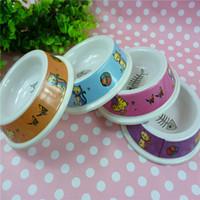 melamine dog bowl - 1pcs dogs like imitation porcelain small fish bone pattern melamine bowl dog pet products PW06