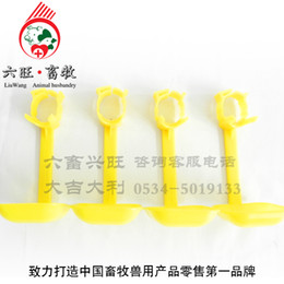Wholesale poultry chicken drinkier bird water dispenser jump ring jump ring belt