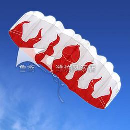 HOT SALE 2 m 2 Line Stunt Parafoil POWER Sport Kite