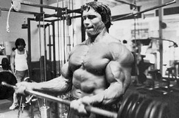Wholesale ARNOLD SCHWARZENEGGER Silk Wall Poster Hot Movie Star Bodybuilding posters x18 x30 x36 quot