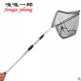 Telescopic fish nets online fish landing nets telescopic for Telescoping fishing net