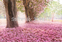 Wholesale thin vinyl Photography Backdrop flower tree Custom Photo Prop backgrounds ftX7ft D