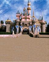 Wholesale 300cm cm ft ft Backgrounds beautiful castle photography backdrops vinyl photography backdrop