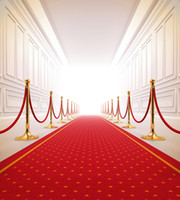 baby gallery - 300 cm ft ft Wedding background red carpet gallery photography backdrops photo studio props baby