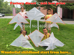 Wholesale Outdoor Fun Sports Diy Children s Teaching Printing Top Grade Tropical Fish Kite Flying