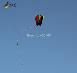 Wholesale Out sports Kids Kite Parafoil Kite Software Kite For Christmas Gift With Flying Tools