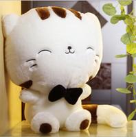 Wholesale cm the new plush toy cute big cat face long doll large plush cat birthday gift giant plush cat toys