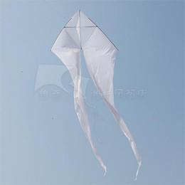11' White Ghost Delta Kite