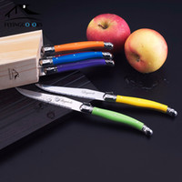 Wholesale set Laguiole Style Stainless Steak Knife w Rainbow Handle Put in Wood Holder Kitchen Cutlery