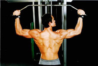 Wholesale Gym Bodybuilding Padded Lifting Strapes