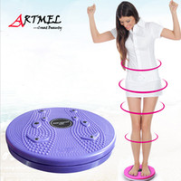 Wholesale High quality Slimming Thin Waist Trainer Plate Machine Magnetic Therapy Massage Fitness Equipment Disk Twister