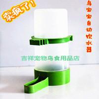 Wholesale Automatic bird water dispenser feeder bird water kettle water tank plastic cup bird pet supplies