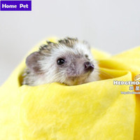 Wholesale Fast Drying Pet African mini Hedgehog Grooming Microfiber Towel Pet Supply Dog Cat Towel Clean Cham M50