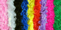 Wholesale 5 Fancy Dress Accessory Multicolor Feather Boa Party Costume M