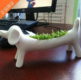 Wholesale REAL Grass Dachshund New Arrival planting grass little vase Good for gift decoration kind of animals