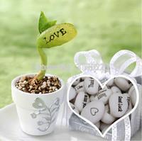 bean table - Small Cute Vase For Magic Bean Bonsai Flowerpot Home Decoration Table Canavalia Maritima Seeds Planter Love Gifts