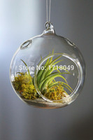 Wholesale airplant orb terrariums hanging glass candle holder for wedding decor home decoration