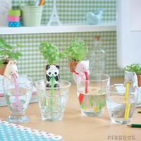 Wholesale Pieces Ceramic Creature Mini Backpack Plant Pot Chuppon Self Watering Animal Planter Pig Cat Rabbit Panda