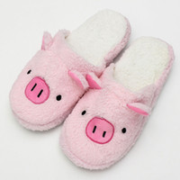 Wholesale Winter Cotton Indoor Slippers Slip Confinement Home Furnishing Men And Women Cute Shoes Warm Shoes Size