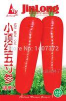 Cheap Small five-inch ginseng carrot top red dragon vegetable seeds Ha full shipping 5 grams 1.5 yuan a kg 40 yuan