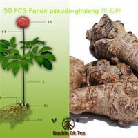 Cheap ginseng seeds Best bonsai seeds