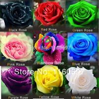 Wholesale Flowers Seeds mix colour Rose Seeds flower pots planters adenium