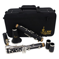 Wholesale Clarinet ABS Key bB Flat Soprano Binocular Clarinet with Cleaning Cloth Gloves Reeds Screwdriver Case Woodwind Instrument